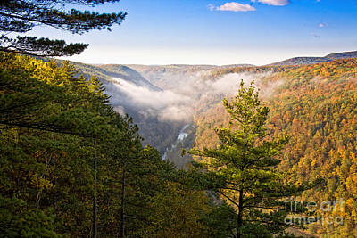 Photograph - Fog Over The Canyon by Ronald Lutz
