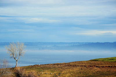 Photograph - Fog Over The Lake by Rima Biswas
