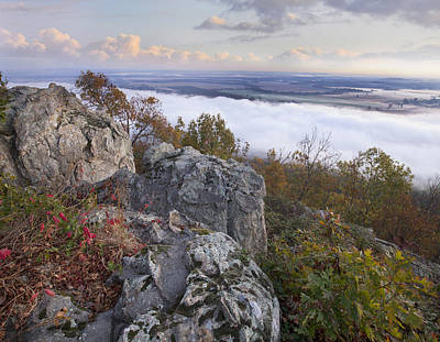 Arkansas Photograph - Fog Over Valley Petit Jean State Park by Tim Fitzharris