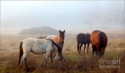 Fog Ponies Art Print by Julia Hassett
