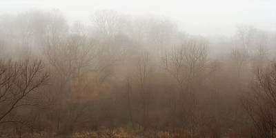 Brown Leaf Photograph - Fog Riverside Park by Scott Norris
