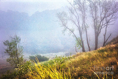 Foggie Dune Colored Art Print