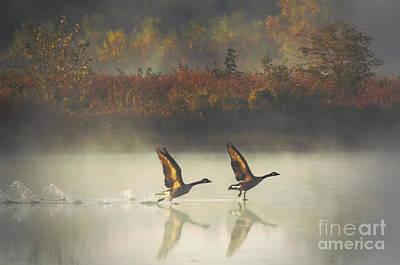 Foggy Autumn Morning Art Print by Elizabeth Winter