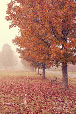 Photograph - Foggy Autumn Morning Etna New Hampshire by Edward Fielding