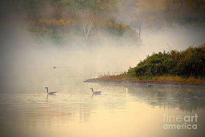 Foggy Autumn Swim Art Print