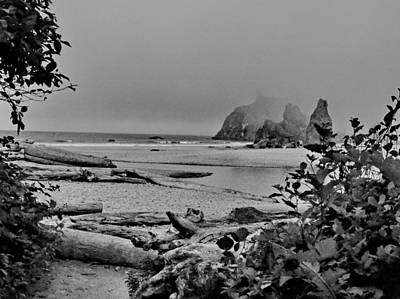 Photograph - Foggy Beach by Ansel Price
