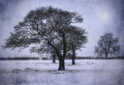Photograph - Foggy Christmas Eve by Ian Mitchell