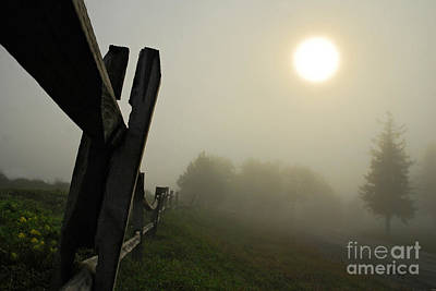Foggy Country Road Art Print by Lois Bryan