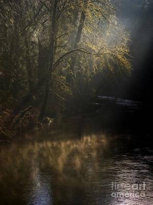 Art Print featuring the photograph Foggy Creek by Inge Riis McDonald