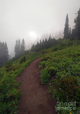 Chinook Photograph - Foggy Crest Trail by Mike  Dawson