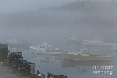 Photograph - Foggy Cutler Harbor by Alana Ranney