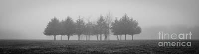 Photograph - Foggy Day by Cheryl McClure