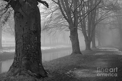 Photograph - Foggy Day by Randi Grace Nilsberg