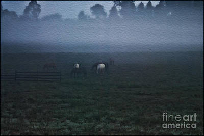 Photograph - Foggy Dew by Joe McCormack Jr
