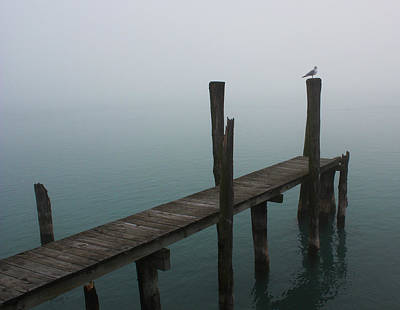 Photograph - Foggy Dock 15 by Mary Bedy