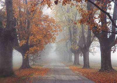 Foggy Driveway Print by Wendell Thompson