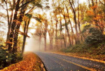 Foggy Fall Wonderland - Blue Ridge Parkway I Art Print by Dan Carmichael