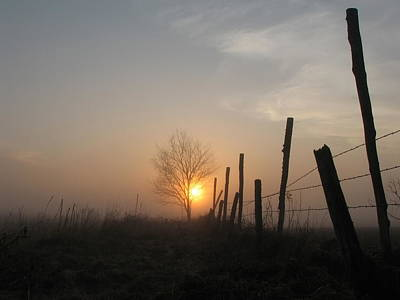 Photograph - Foggy Fence by Dale Kauzlaric
