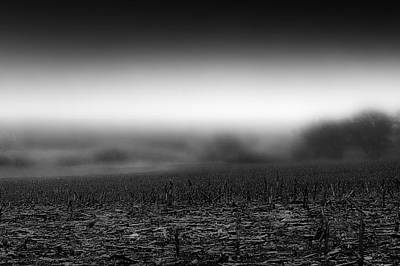 Vintage Automobiles - Foggy Field by Tom Gort