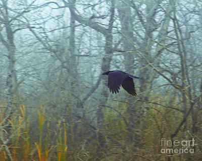 Foggy Flight Art Print by Judy Wood
