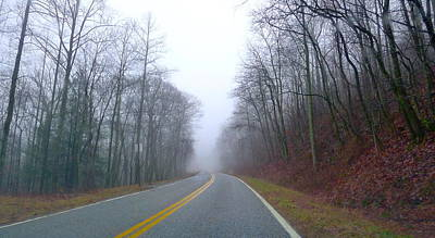Photograph - Foggy Forest Road by Denise Mazzocco