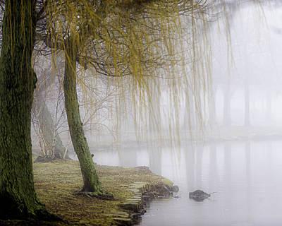 Foggy Lake Morning Art Print by Vicki Jauron