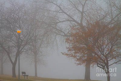 Foggy Photograph - Foggy Lake View by James BO  Insogna