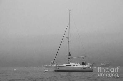 Monhegan Photograph - Foggy Maine by Pat Lucas