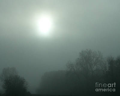 Photograph - Foggy Morn by Nan Wright