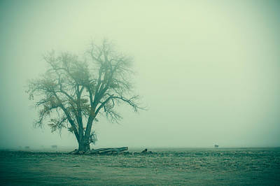 Farm Scenes Photograph - Foggy Morn by Todd Klassy