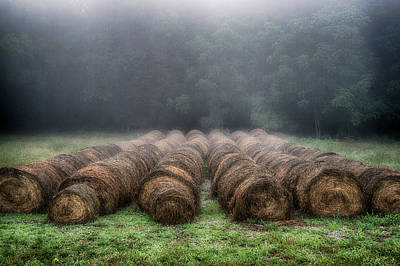 Foggy Morning Bales I Art Print by David Morel
