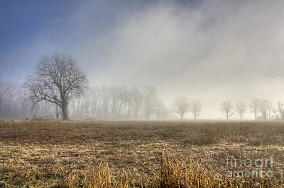 Photograph - Foggy Morning by David Cutts