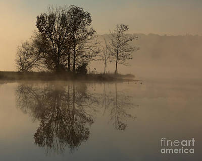 Foggy Morning Print by Flying Turkey