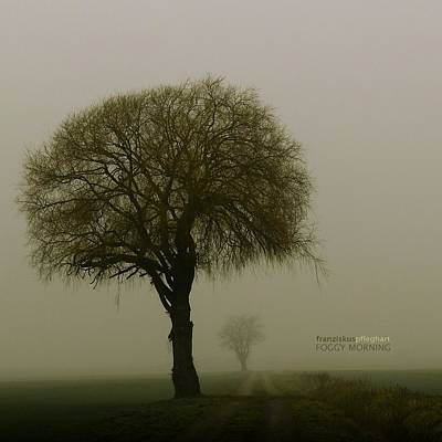 Farmland Digital Art - Foggy Morning by Franziskus Pfleghart