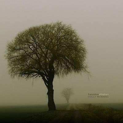 Francis Photograph - Foggy Morning by Franziskus Pfleghart