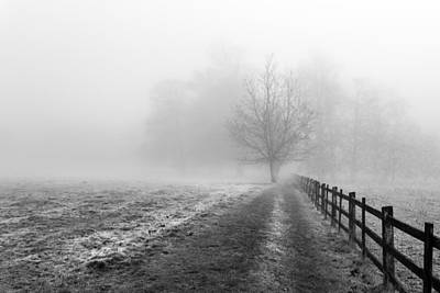 Art Print featuring the photograph Foggy Morning. by Gary Gillette