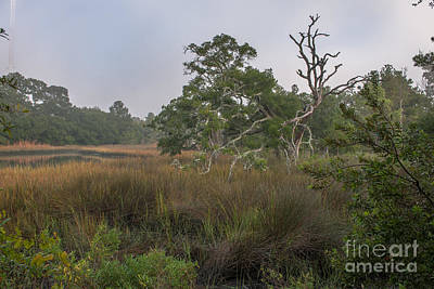 Photograph - Foggy Morning In Mount Pleasant Sc by Dale Powell