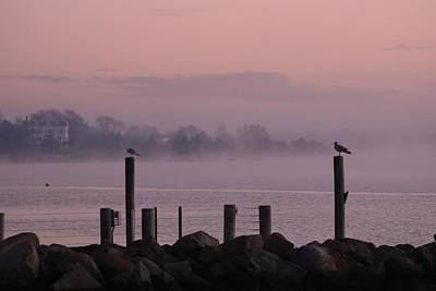 Photograph - Foggy Morning In Stonington by Amy Porter