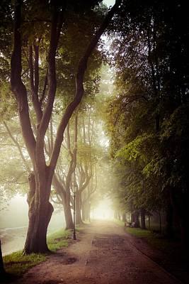 Foggy Morning In The Nesvizh Park Art Print by Sviatlana Kandybovich