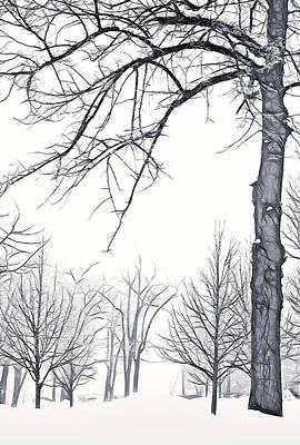 Foggy Morning Landscape - Fractalius 6 Art Print by Steve Ohlsen