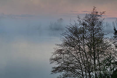 Photograph - Foggy Morning On Lake Landscape by Valerie Garner