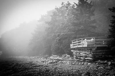 Foggy Morning Overlook Art Print by David Pinsent