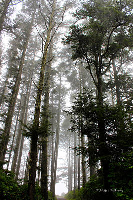 Photograph - Foggy Morning by Pat McGrath Avery