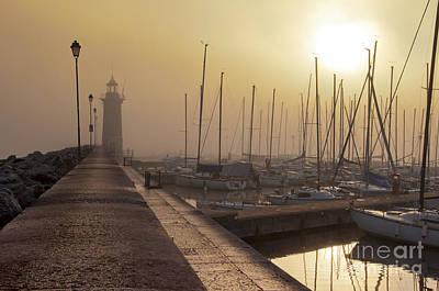 Photograph - Foggy Morning by Simona Ghidini