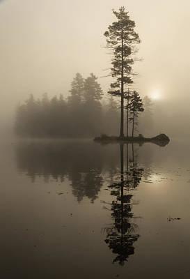 Foggy Morning Sunrise At The Lake Art Print