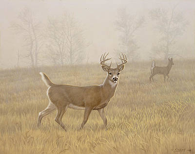 Whitetail Deer Painting - Foggy Morning-whitetail by Paul Krapf