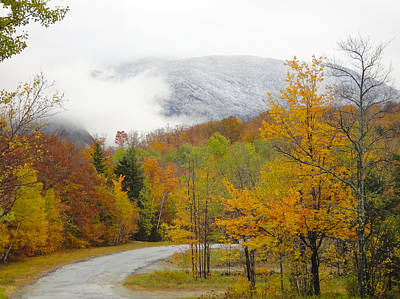 Photograph - Foggy Nh Fall Folliage by Penny Lisowski