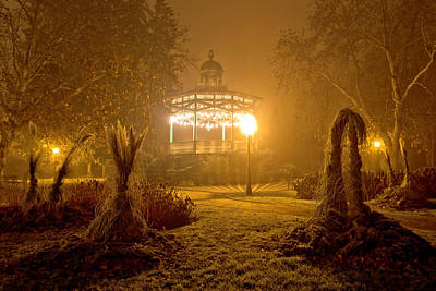 Photograph - Foggy Night View Of Park Pavillion by Brch Photography