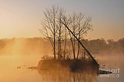 Photograph - Foggy Ohio Morning by Randy Rogers