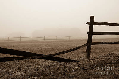 Foggy Pasture Art Print